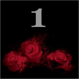 La fleur de Rose - Page 6 115