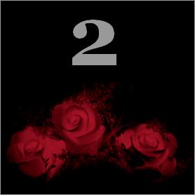 La fleur de Rose 211