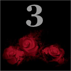La fleur de Rose - Page 5 311