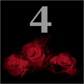 La fleur de Rose 411