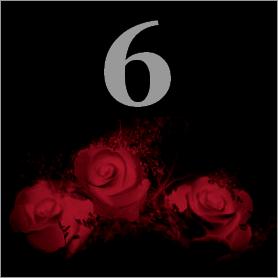 La fleur de Rose 611