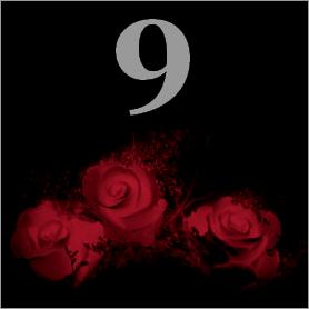 La fleur de Rose 910