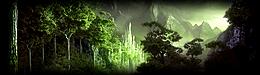 La forêt de Lalwende Lal15