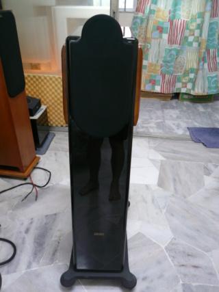 Usher cp6311 speakers (used) Usher110