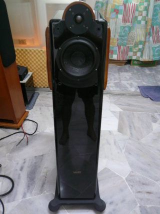 Usher cp6311 speakers (used) Usher210