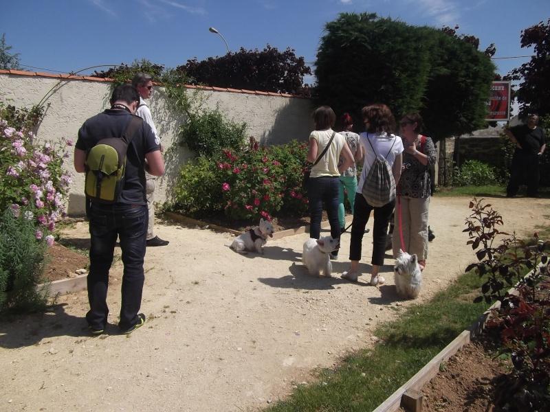 Réunion pentecôte 2012: LES PHOTOS!!! - Page 7 Dscf5637