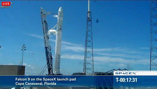Falcon 9 / Dragon COTS-2: Préparatifs (Lancement le 19.05.2012 ) - Page 8 Sans_991