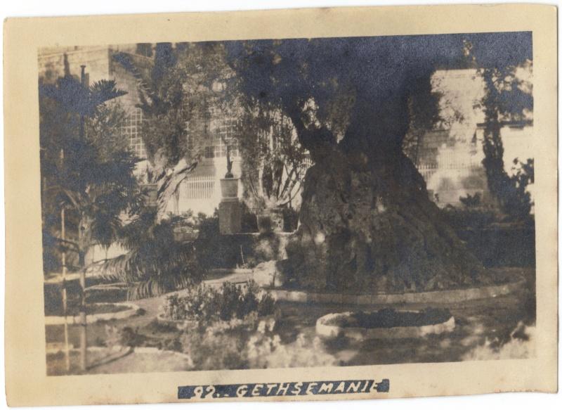 Album photos d'un soldat britannique en Egypte, Palestine, Syrie (,..) en 1918 Garden10