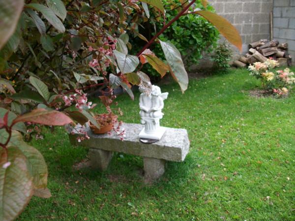 emeraude coté jardin Imgp0121