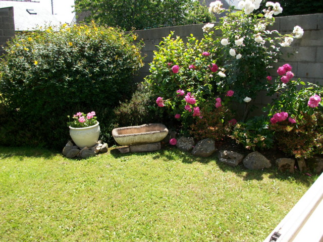 emeraude coté jardin Imgp0216
