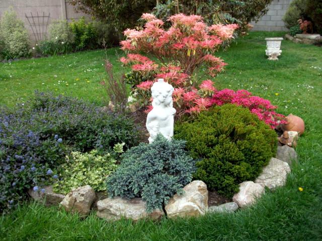 emeraude coté jardin Imgp0568