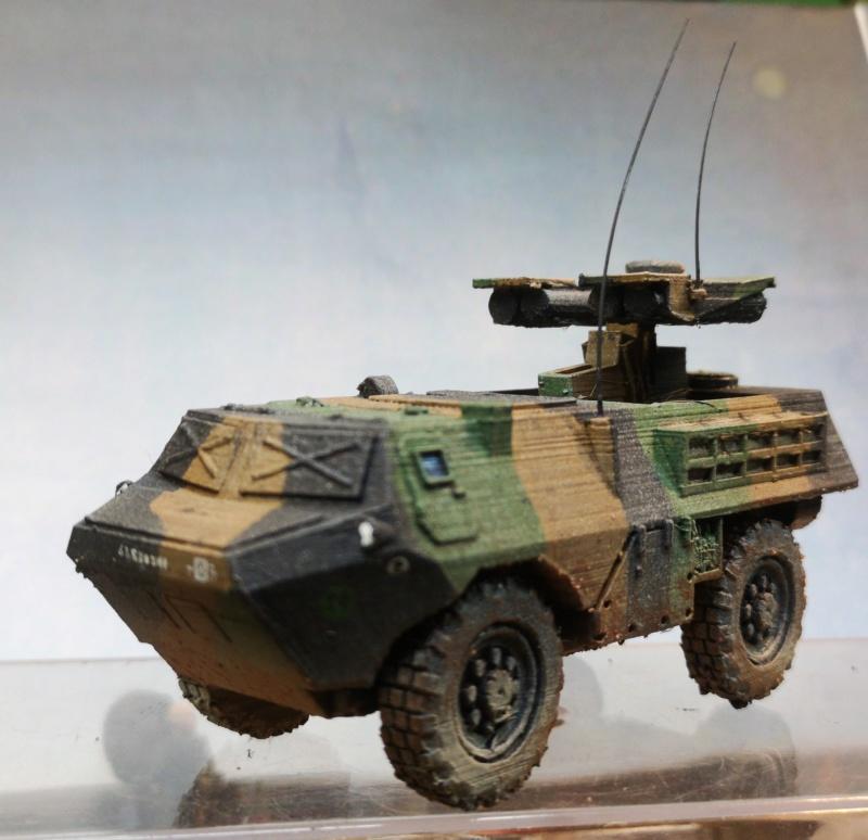 Opération Serval, Mali 2014, 28mm Img_2012
