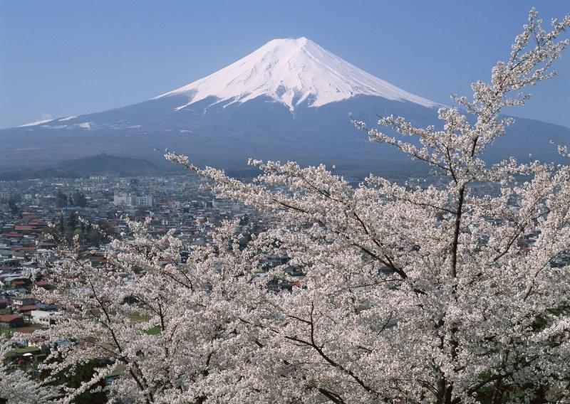 Quelle vue ... Fuji0010