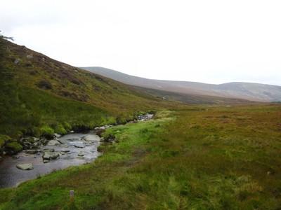 Ma tournee d'adieu a l'Irlande Img_1528