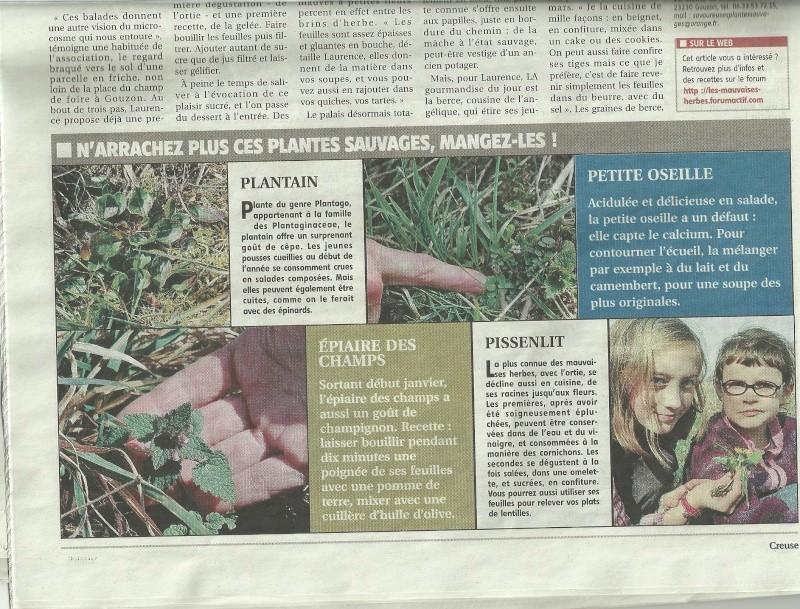 articles de presse Articl13