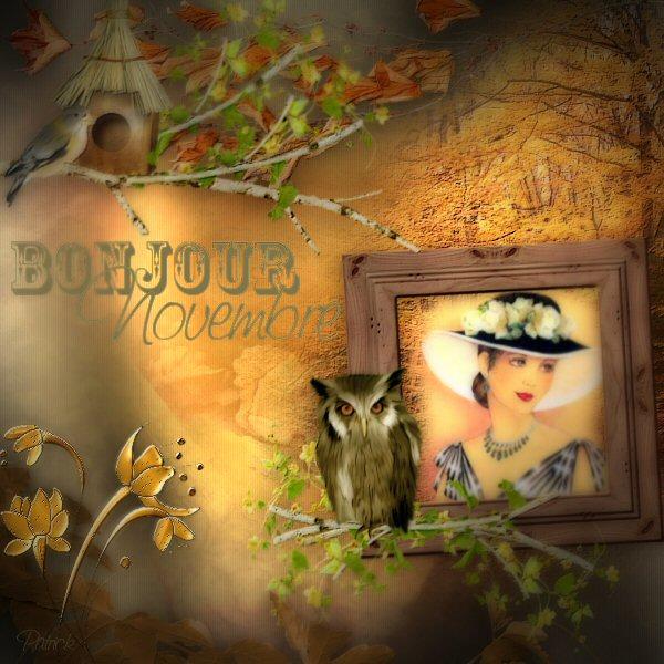 Galerie des pages de NOVEMBRE Novemb10