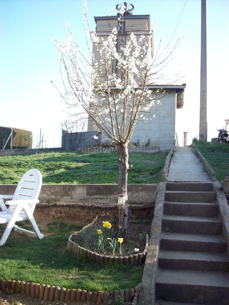 le jardin de Vanessa 2910