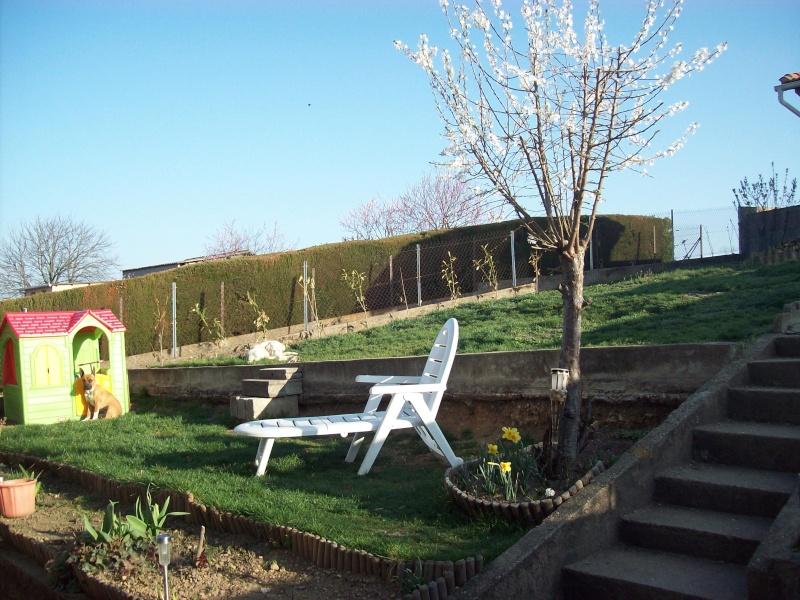 le jardin de Vanessa 3010