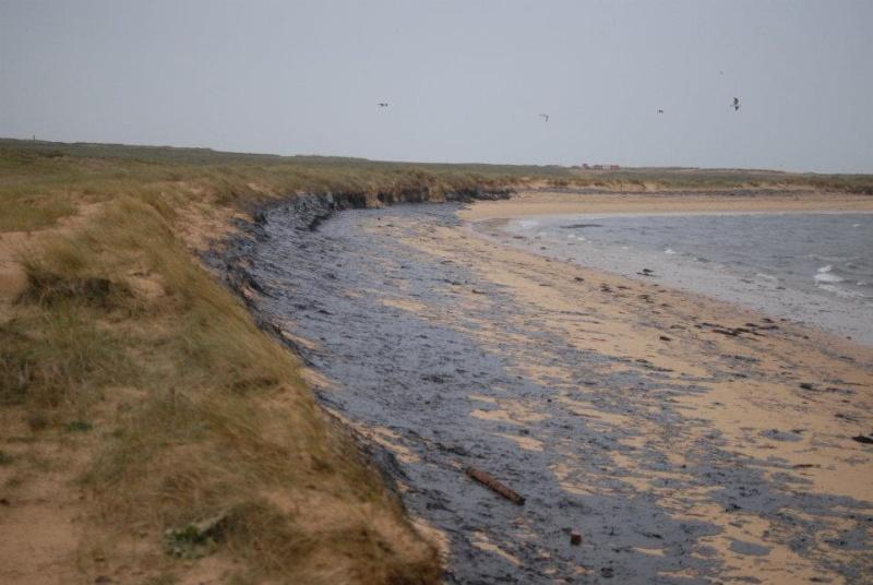 Cargo échoué à ETEL, pollution sur les plages ... Mazout18