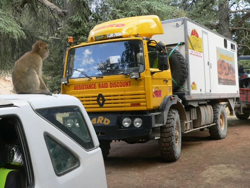 voici notre raid d'octobre 2011 P1240011