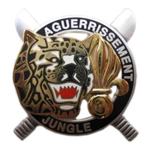 GUYANE : DEUX MILITAIRES du 9e Régiment d'infanterie de marine (RIMa) tués en Guyanne Brevet26