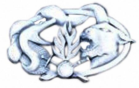 GUYANE : DEUX MILITAIRES du 9e Régiment d'infanterie de marine (RIMa) tués en Guyanne Sortie10