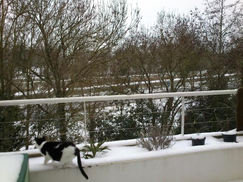 Il neige chez vous ? - Page 3 Dsc_0012