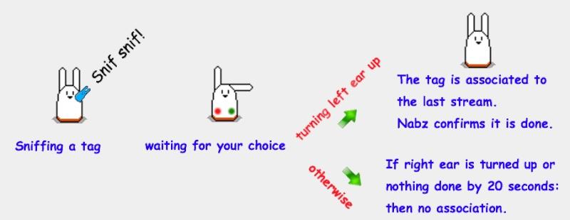 [NID] NABIZDEAD for Dummies: a step by step tutorial. Settin13