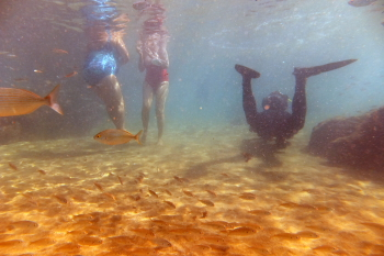 Lanzarote Diving Dscf6413