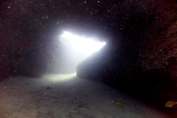 Lanzarote Diving Dscf6418