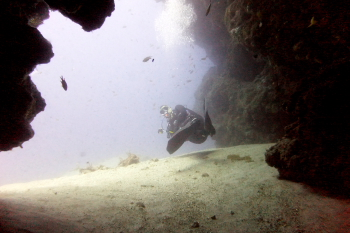 Lanzarote Diving Dscf6420