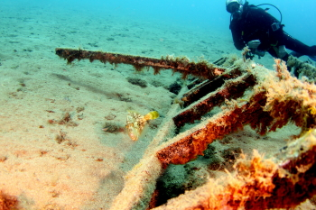 Lanzarote Diving Img_5322