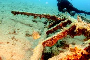 Lanzarote Diving Img_5323