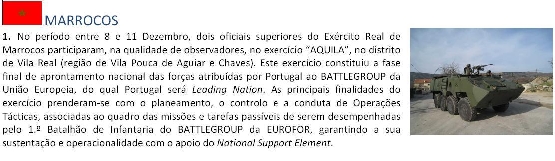 Coopération militaire maroco-portugaise 210