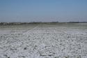 Risque de gel important pour les blés - Page 10 Bd_fos10