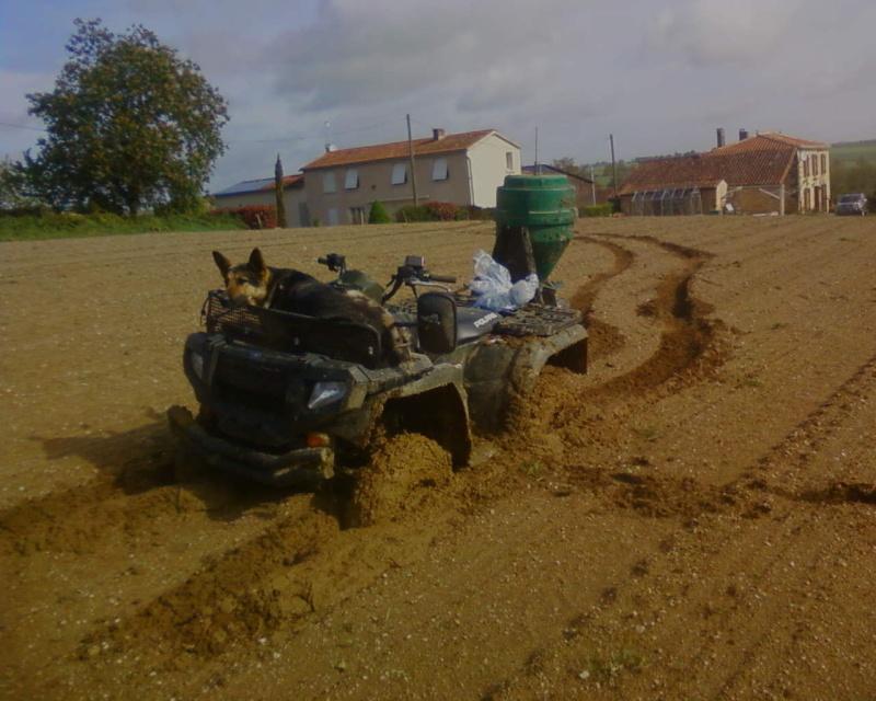 Concours du tracteur le plus cradingue - Page 2 Photos17