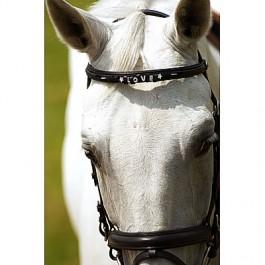 materiel cavalier et cheval GROSSES PROMO JUSQUE FIN DECEMBRE!!! Fronta18