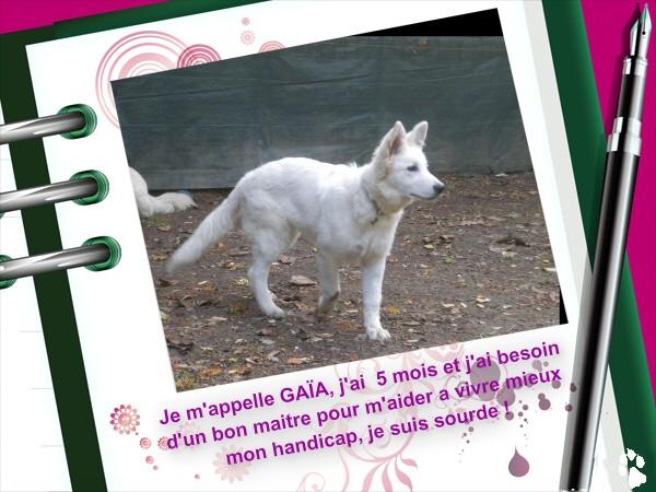gaia 5 mois Gaia10