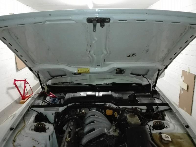 Rimozione colla da cofano motore (lato motore) Img_2011