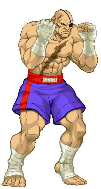 """Partie 41 """"Street Fighter"""" - Liste des rôles Sagat-12"""