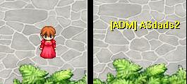 Colocando Tag ADM/GM Imagem11