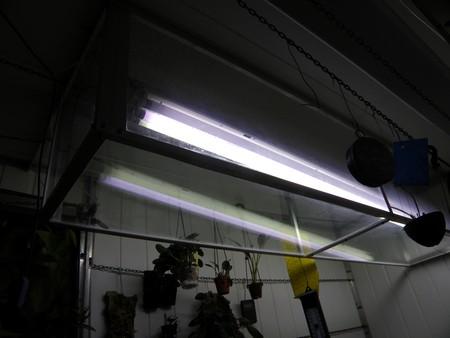 lampe horticole led 1610