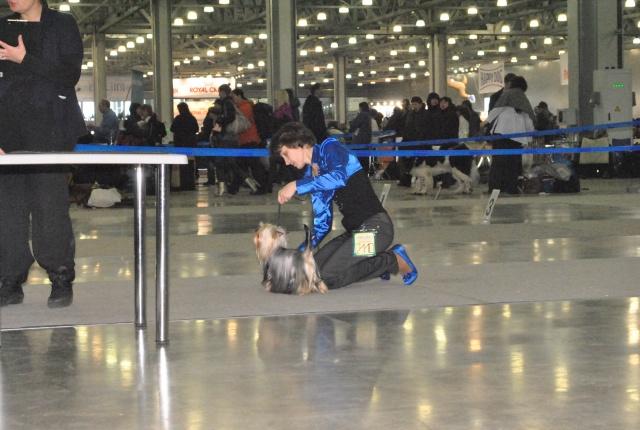 ЕВРАЗИЯ 2012 - отчет о выставке! - Страница 2 Ddnddd12
