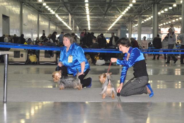 ЕВРАЗИЯ 2012 - отчет о выставке! - Страница 2 Ddnddd18