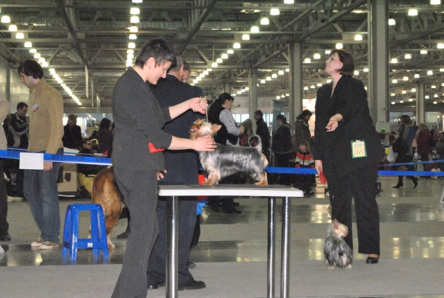 ЕВРАЗИЯ 2012 - отчет о выставке! - Страница 2 Ddnddd19