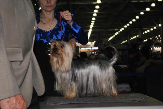 ЕВРАЗИЯ 2012 - отчет о выставке! Dudndd19