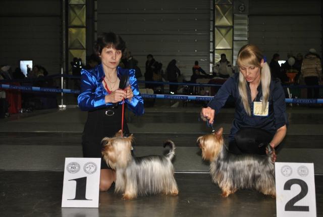 ЕВРАЗИЯ 2012 - отчет о выставке! Dudndd20