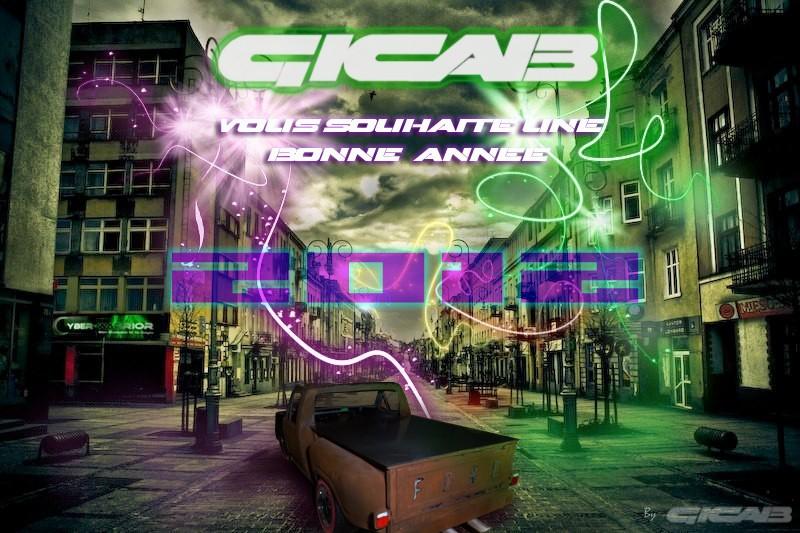Nos meilleurs voeux pour l'an 2012... Gicab_10