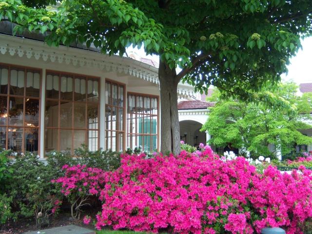 Les Jardins, Les Fleurs et l'Eau au DLP Disney76