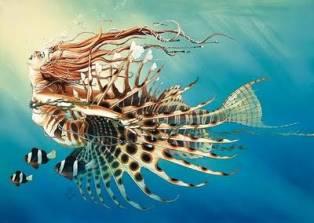GALERIE D'IMAGES Fishgi12